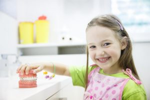little girl playing with a model of the teeth with braces